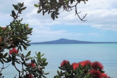 Auckland Kohimarama Beach