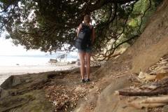 Auckland St Heliers Beach