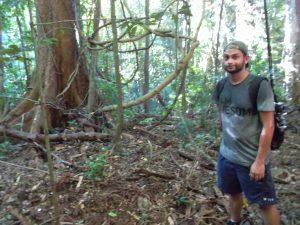 dehydration Australia jungle