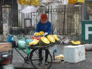 durian hanoi