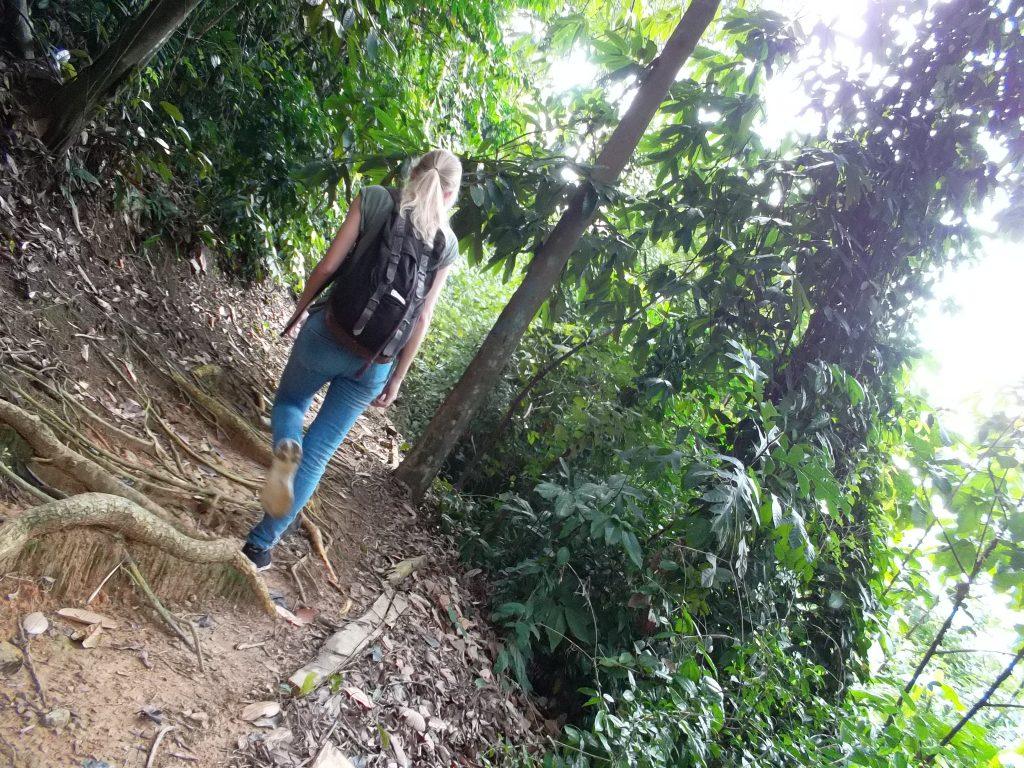 Dschungel Kleidung
