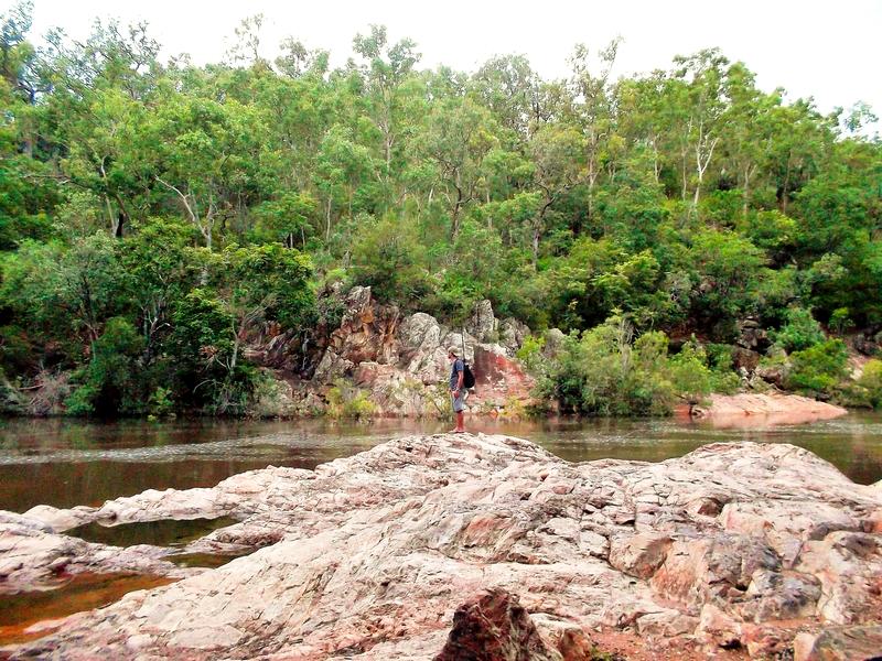 fishing alligator creek