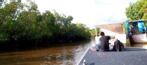 hull river australia