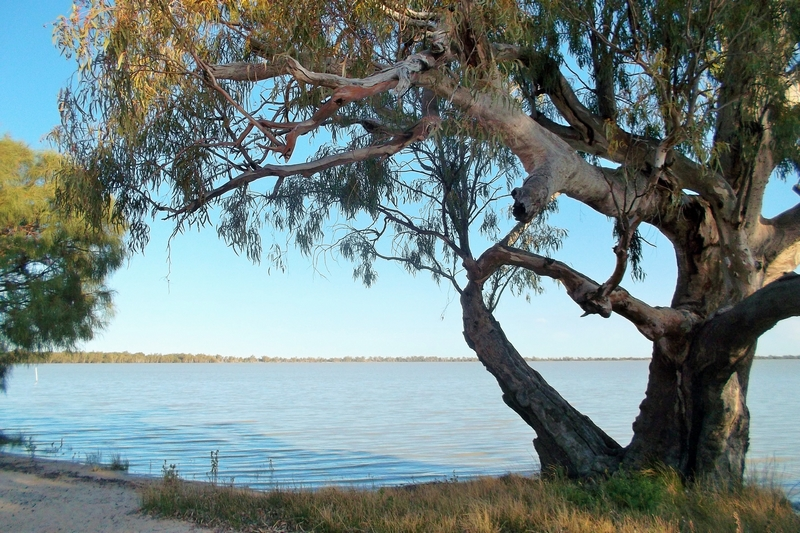 lake benanee roadtrip adelaide