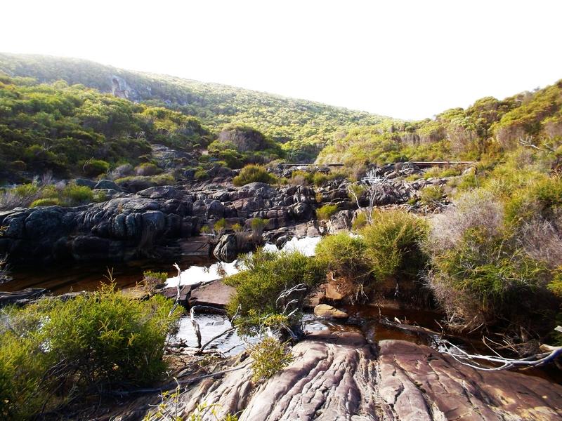 flinders chase snake lagoon