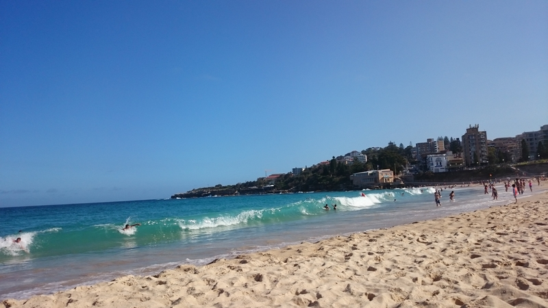 bondi to coogee walk coogee beach