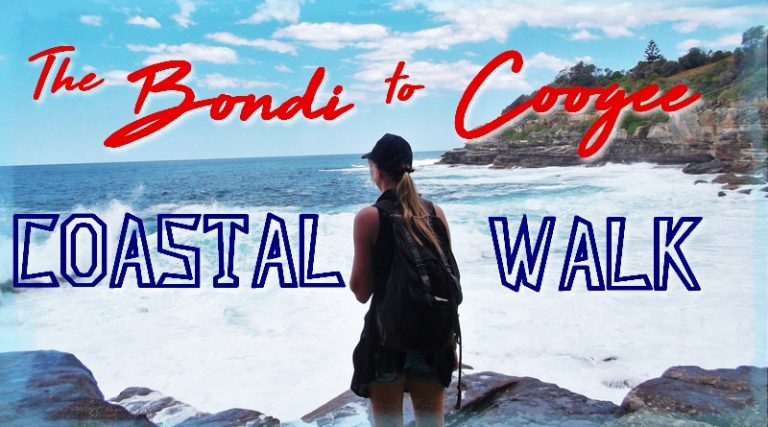 New Zealands Bondi Bludger and other Australian myths