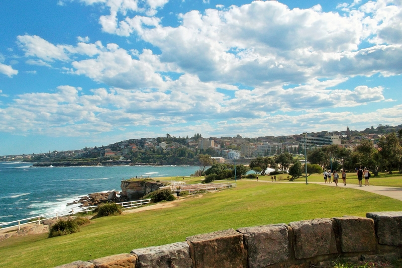 bondi to coogee walk dolphins point
