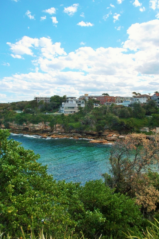 bondi to coogee walk gordons bay