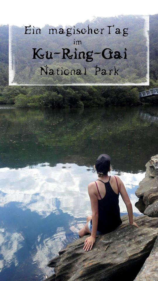 ein magischer tag im Ku-Ring-Gai National Park