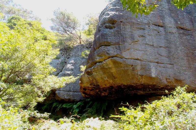 sydney bat cave