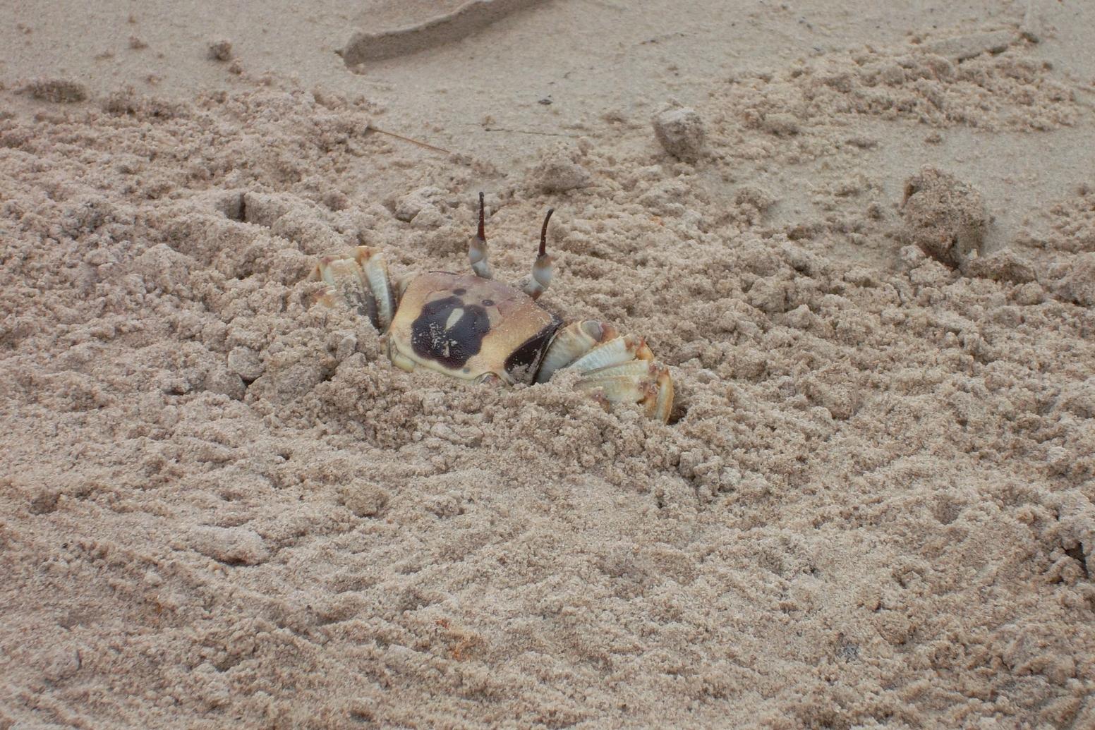 Krabi kostenlose Sehenswürdigkeiten